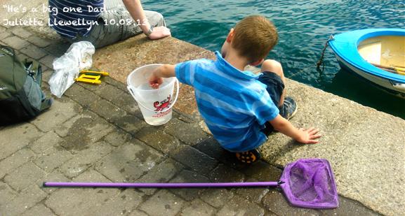 Jetty Crabbing